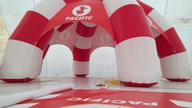 Pasifik Tanıtım Çadırı